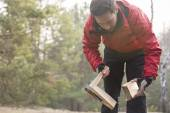 Hiker cutting firewood in forest — Stock Photo