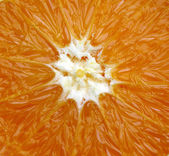 Fresh Orange slice — Stock Photo
