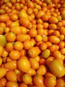 Organic Kumquats on display at a farmers market in San Francisco — Stock Photo