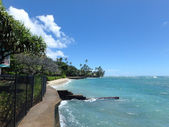 Makalei Beach Park with seawall, coconut trees, homes — Stock Photo