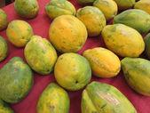 Rows of Hawaiian big rip papayas on red cloth — Stock Photo