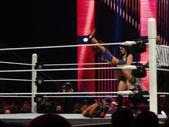 Diva Paige drops AJ lee on a Bella Sister in ring — Stock Photo