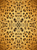 Kaleidoscope Animal Fur Pattern — Foto de Stock