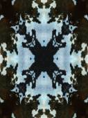 Dark Kaleidoscope Cow Hide Pattern — Stock Photo