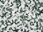 绿色和黑色的伪装 — 图库照片
