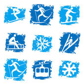Winter sports grunge icons — Stock Vector