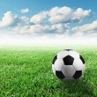 Soccer ball — Stock Photo #52020105
