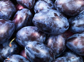 Healthy plums — Stock Photo