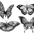 Butterfly vector set — Stock Vector #56841181