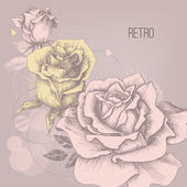 Retro rose background greeting card — Stock Vector