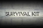 Survival kit — Stock Photo