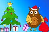 Christmas owl — Stock Photo