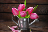 Pink tulips in old metal watering can — Stock Photo