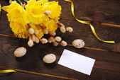 Bunch of daffodils with catkins and blank card for easter greeti — Stock Photo