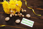 Bunch of daffodils with catkins and card for easter greetings in — Stock Photo