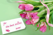 Bunch of pink tulips for mom — Stock Photo