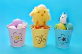 Easter decoration with eggs in three buckets — Stock Photo