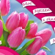 Polish greeting card for mothers day — Stock Photo #72535737