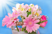 Bunch of beautiful pink flowers — Stock Photo