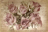 Vintage background with dried roses — Stock Photo