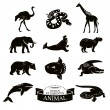 Set of animal icons — Stock Vector #71255417