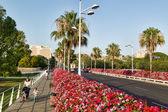 Puente de las Flores (Flower Bridge) in Valencia, Spain — Stock Photo