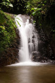 Waterfall in Mindo — Stock Photo