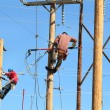 Two electrical linemen working — Stock Photo #53486045