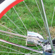 Bike tire on grass — Stock Photo #53488529