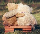 Two teddy bears on bench — Stockfoto