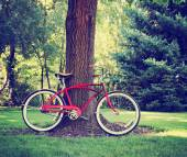 Vintage bicycle in park — Stock Photo