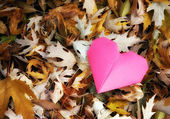Origami heart in pile of leaves — Stock Photo