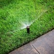 An automatic sprinkler watering grass — Stockfoto