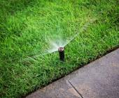 An automatic sprinkler watering grass — Stock Photo