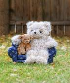 Teddy bear on couch with toy dog — Foto de Stock