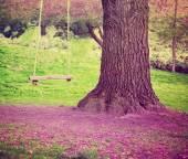 Big tree with swing — Stock Photo