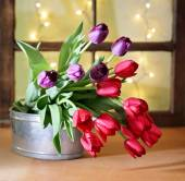 Tulips on a wooden board — Stock Photo