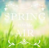 Spring is in the air quotation — Stock Photo