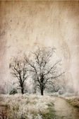 Trees in a frozen field — Stockfoto
