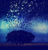 Tree with birds and stars — Stock Photo