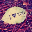 Leaf that reads i love you — Stockfoto #59131249