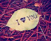Leaf that reads i love you — Stock Photo