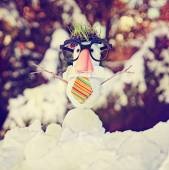 Snowman with hipster tie and glasses — Stock Photo