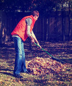 Man raking autumn leaves — Stock Photo
