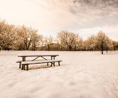 Scenic cold winter landscape — Stock Photo