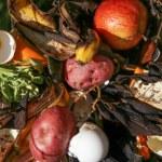 Compost pile in a backyard garden — Stock Photo #70930201