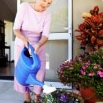 Elderly lady watering her garden — Stock Photo #74975211