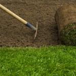 Gardener applying turf rolls — Stock Photo #68907601