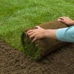 Gardener applying turf rolls — Stock Photo #68907633