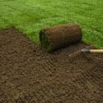 Gardener applying turf rolls — Stock Photo #68911455